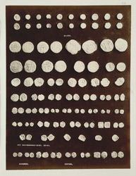 Brahmanabad, Hyderabad District, Sindh. Coins
